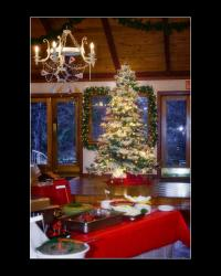 Christmas tree in The Expanding Light dining room