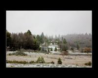 Snowey afternoon at Ananda