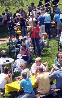 A large group of people eating lunch outside, on a lawn-like setting