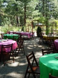 Table settings in the Meditation Retreat gardens, magenta and green