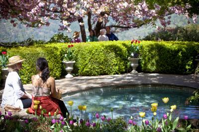 tulips010.jpg