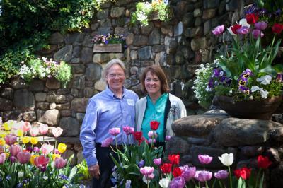 tulips011.jpg