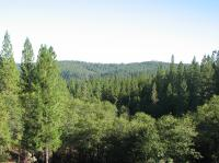a-view-from-anandas-meditation-retreat.jpg