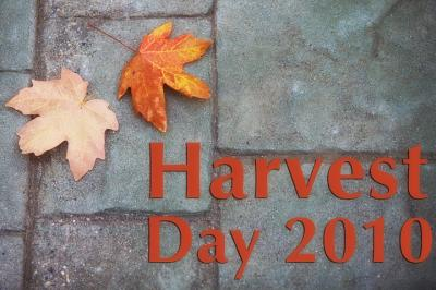 harvest-day-copy.jpg