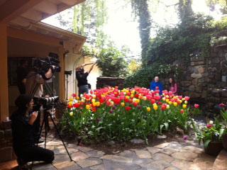 Cameras, tulips, and Swami Kriyananda