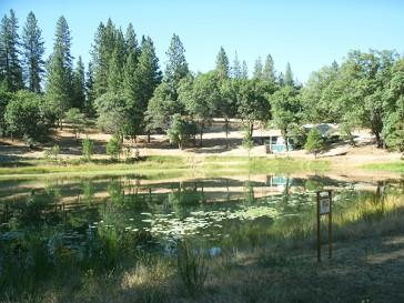 lotus lake ananda village