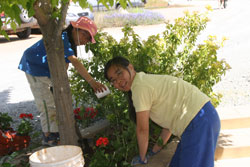 Sienda-Lee-working-on-trimming-border,-with-daughter--Raj-Day-05-