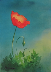 Oil on canvas: One red flower opening up to the sun